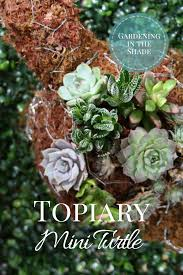 Bunny Topiary Frame Topiary Mini Turtle Tutorial Gardening In The Shade