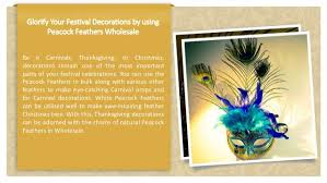 peacock feathers diy crafts