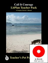 the red badge of courage lesson plans litplan teacher guide
