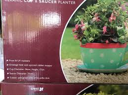 giant teacup planters in paignton devon gumtree