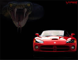 dodge viper snake viper snake wallpapers wallpaper cave