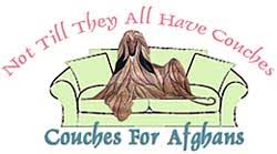 zoso afghan hound dna couches for afghans
