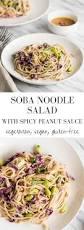 vegetarian cold soba noodle salad with peanut sauce gf vegan