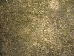 concrete weathered texture sharecg
