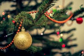 christmas tree care and tips