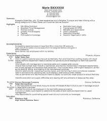 Costco Resume Examples by Best Rep Retail Sales Resume Example Livecareer