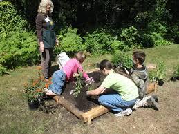 gardening picture young master gardeners josephine county master gardeners
