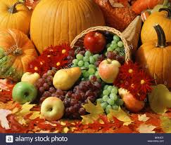 harvest cornucopia autumn harvest cornucopia stock photo royalty free image