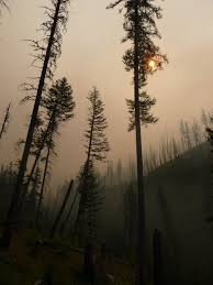 Large Wildfire Definition by Wildfires Raged Over Nine States For The First Half Of September