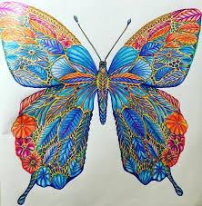 192 color book tropical wonderland millie marotta images
