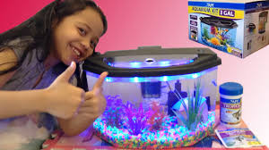 aquarium starter kit fun with alanna youtube