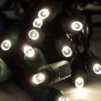 mini incandescent christmas lights 12 best led christmas lights images on pinterest home ideas led