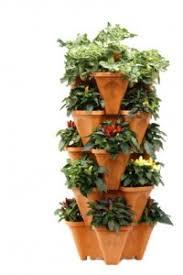 vegetable container garden guide growin crazy acres