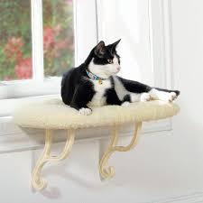 best 25 cat window perch ideas on pinterest cat window cat