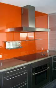 i love the orange painted glass backsplash ours would not be as