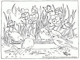 nature scene coloring sheets nature animal coloring pages coloring