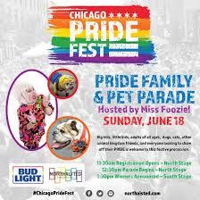 light parade chicago 2017 chicago pride fest 2017 pet and family parade 6 18 2017