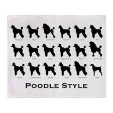 different styles of hair cuts for poodles huxtable the poodle toy poodle blog parti poodle poodle