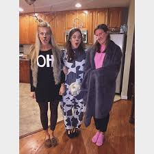 Cute Halloween Costume Ideas Adults 20 Punny Halloween Costumes Ideas Pun