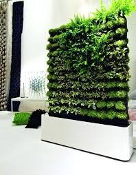 green wall indoor garden wall garden indoor indoor wall garden
