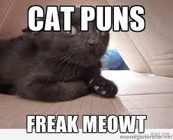 Meme Puns - cat puns freak meowt paranoid cat meme generator puns jokes