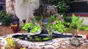 little goldfish pond and waterfall youtube