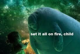 Fire Meme - set it all on fire child memes