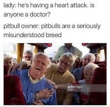 Pitbull Meme - dopl3r com memes lady hes having a heart attack is anyone a