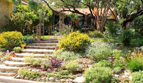 Rock Garden Tour by Rock Oak Deer San Antonio Watersaver Landscape Tour Garden On