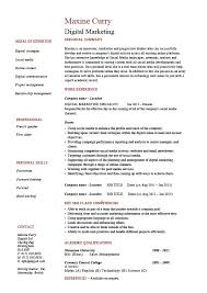 digital marketing resume digital marketing resume exle sle web caign