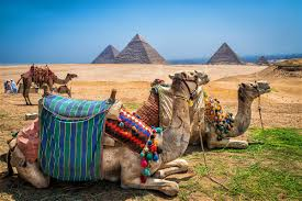 egypt travel lonely planet