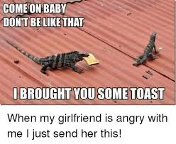 Lizard Toast Meme - come on baby dont be like that i brought you some toast when my
