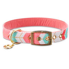 collars best small to large collars petco