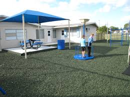 backyard playground with green rubber mulch surface playground