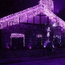 Christmas Decoration Lights Online by Buy Festival Decorative Lights Diwali Lights 270 Purple Led Online