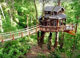 file tree house jpg treehouse masters watch the most lavish house transformations