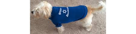 hanukkah clothes happy hanukkah to you your family friends dog
