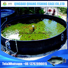 hdpe tilapia farming tank tilapia fish tanks round fish tank in