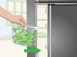 how to grow sugar snap peas 15 steps with pictures wikihow
