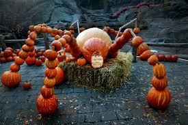 Great Pumpkin Blaze Membership pumpkins get their 15 minutes times union