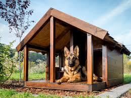 Dog Kennel Flooring Outside by 17 Best Dog Kennels Images On Pinterest Dog Kennel Designs Dog