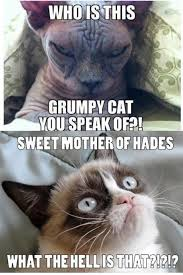 Sweet Mother Of God Meme - oh my god this is hilarious too funny pinterest grumpy cat