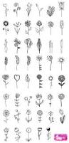 Flower Designs For Drawing Best 25 Flowers Draw Ideas On Pinterest Grafica Centro Rj