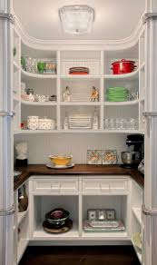 Kitchen With Pantry Design Cabinets U0026 Storages Black Masculine Sleek Glossy Kitchen Cabinet