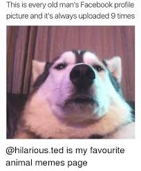 Profile Picture Memes - 25 best memes about facebook profile facebook profile memes