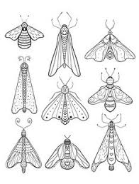advanced insect coloring bliss insects coloring