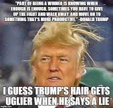 Meme Ge - donald trump hair meme generator imgflip