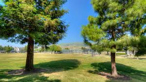 Mill Creek Landscaping by Mill Creek Apartments Reviews In Milpitas 440 Dixon Landing Road