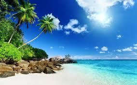 tropical desktop backgrounds wallpapersafari