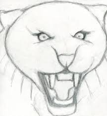 how to draw a roaring tiger step by step rainforest animals
